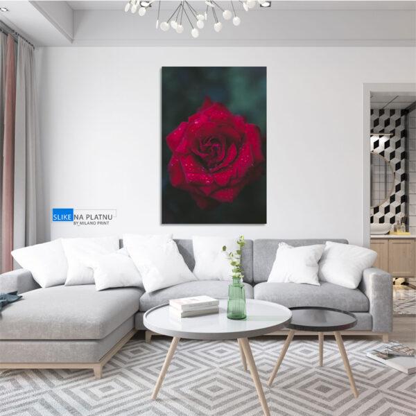 Ruza slika na platnu